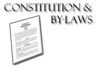 const and bylaws